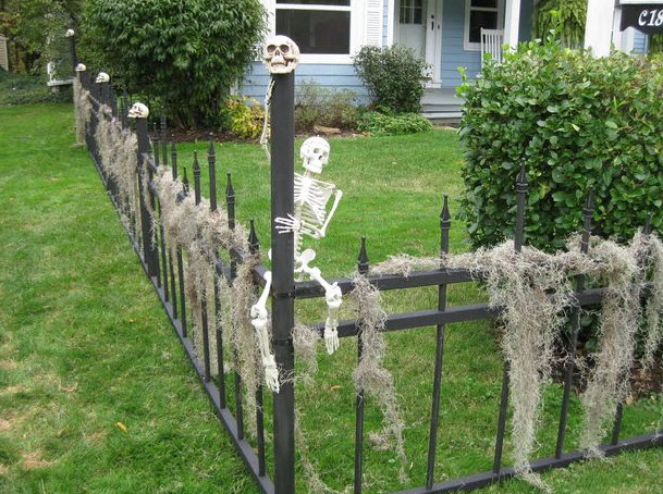 skeleton fence