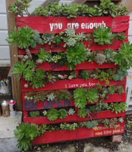 Using Pallets to Create a Vertical Garden